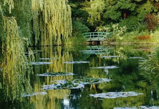 木桥与睡莲